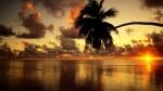 Beach-sunrise-wallpaper