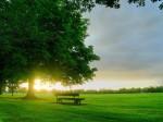 bench_in_sunlight_desktop_wallpaper_22553