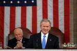 Funny-Bush-640x432