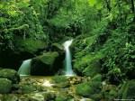 natural-waterfall_wallpaper-for-desktop